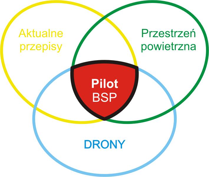 Dziedziny BSP